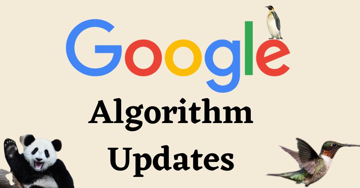 Algorithm Updates 1